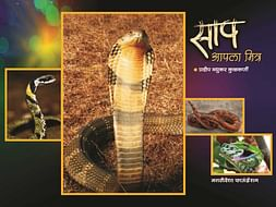 "Help Me to Publish My Book ""Snake is Your Friend"""