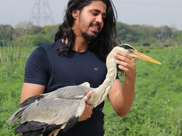 Help Wildlife, Conserve Nature