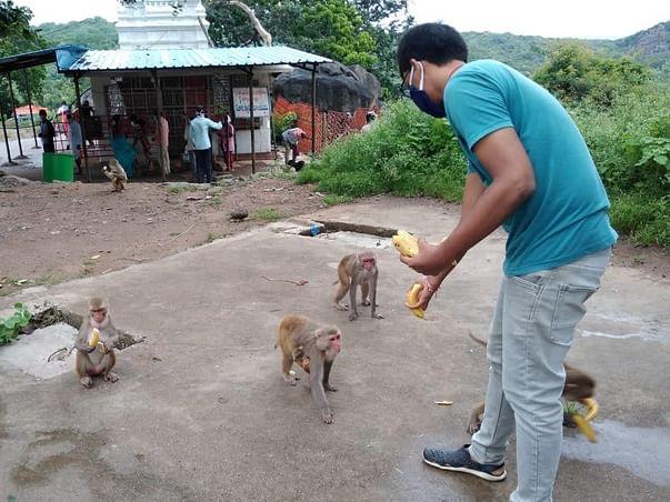 Donate Food for Monkeys @ Kondagattu