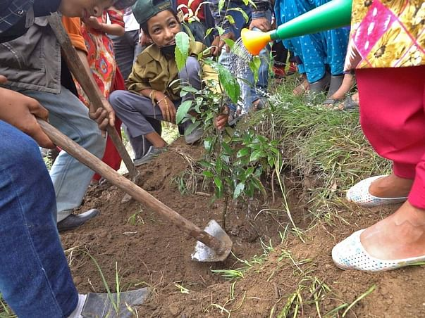 Walk with Janisha and Plant a Tree
