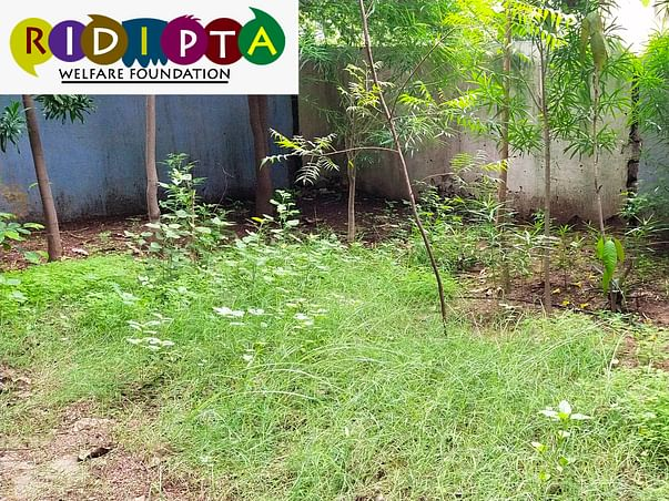 Help me to Make Foundation Of Healthy Environmental Education system.