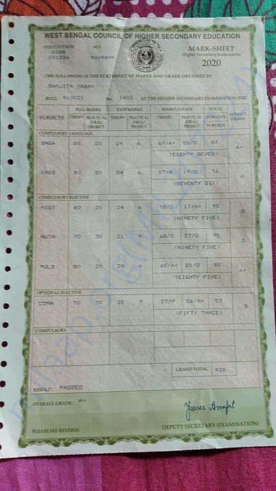Higher Secondary Examination Marksheet