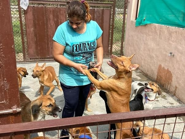 Support Neha To Help Voiceless Souls