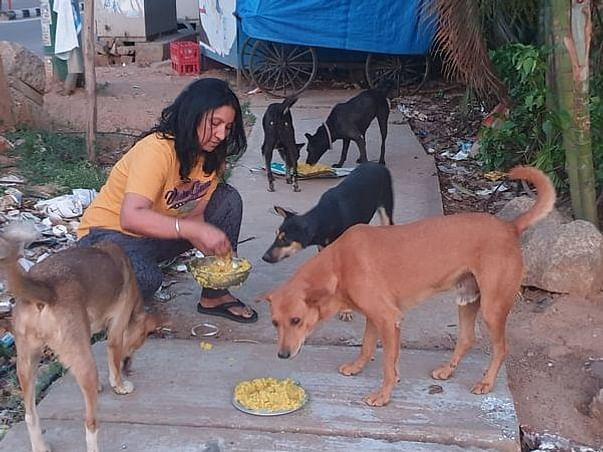 No Job, No Savings- Yet She Feeds 400+ Stray Dogs - Support Jeny