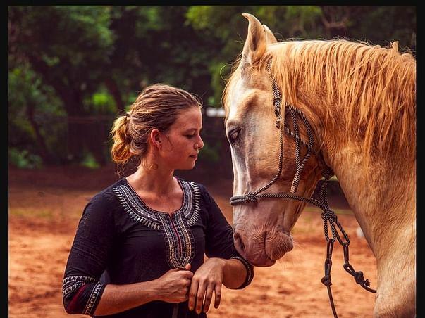 Help Horse2Human be Ready for the Rainy Season