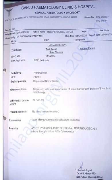 Blood Cancer Diagnosis Repory