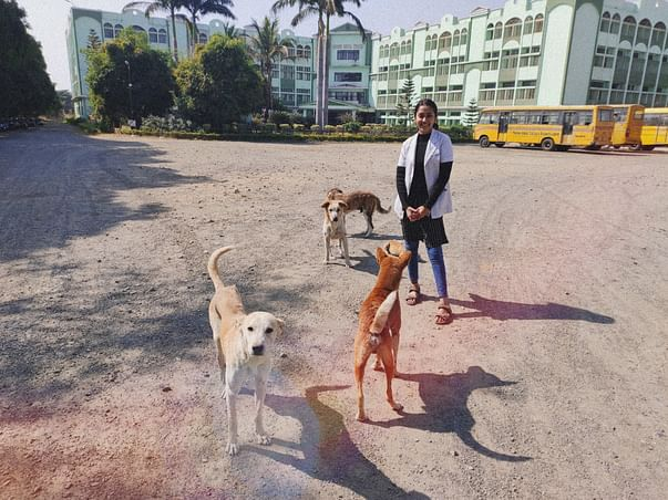 HELP ME VACCINATE STRAY DOGS AND SAVE LIVES.