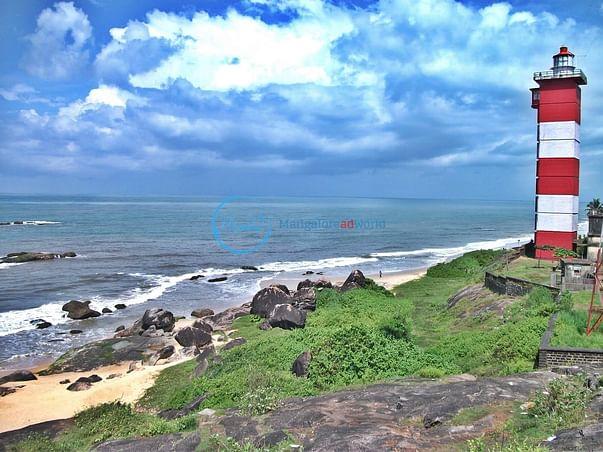 Cleaner Beaches