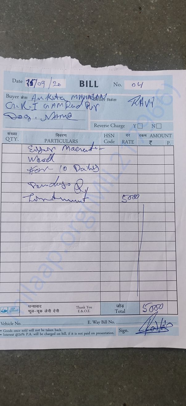 Bill for treatment of neck and ear maggot wound