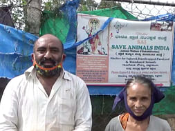 Please Help This Old Couples To Save As Much As Animals As Possible