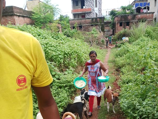 Help Animals Paradise to build a Sheterhome for Stray Animals