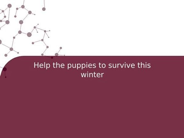 Help The Puppies To Survive This Winter