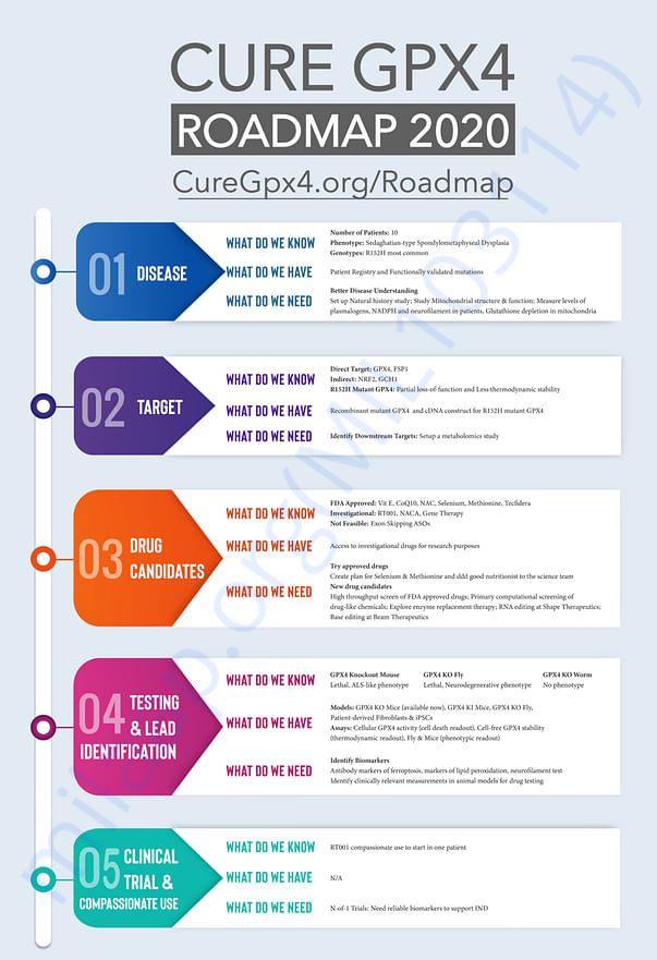 Research Roadmap to cure Raghav