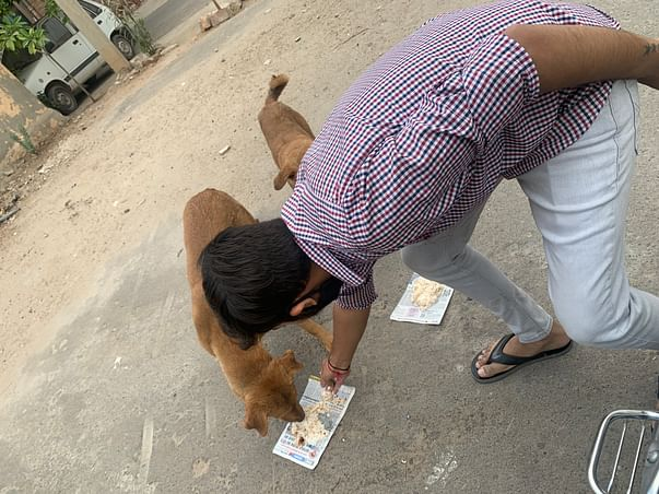 HELPING STRAY DOGS AND PEOPLE FOR THEIR DAILY FOOD