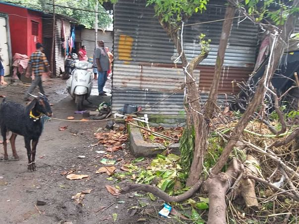 Urgent Grocery Kit for people in Jai Jawan Nagar Slum