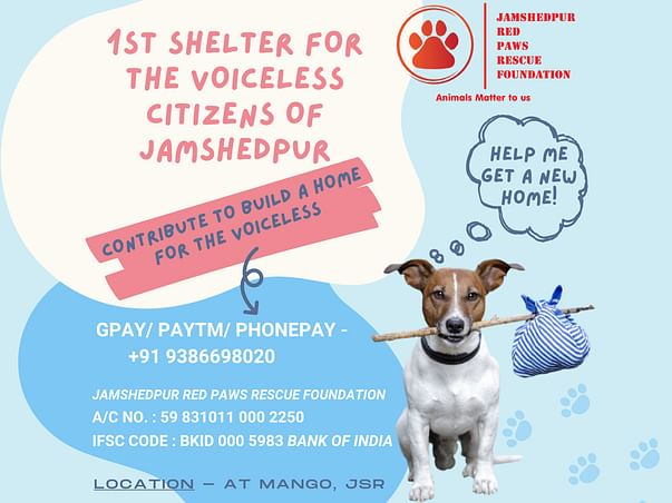 Help Us in Building Home for the Stray Animals of Jamshedpur