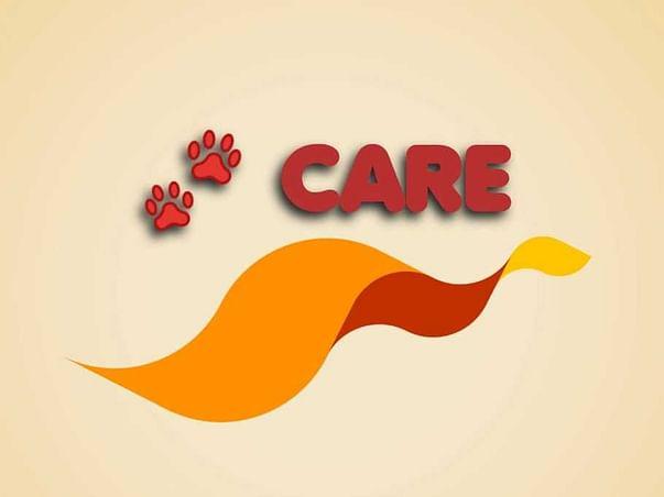 Paws Care 🐾