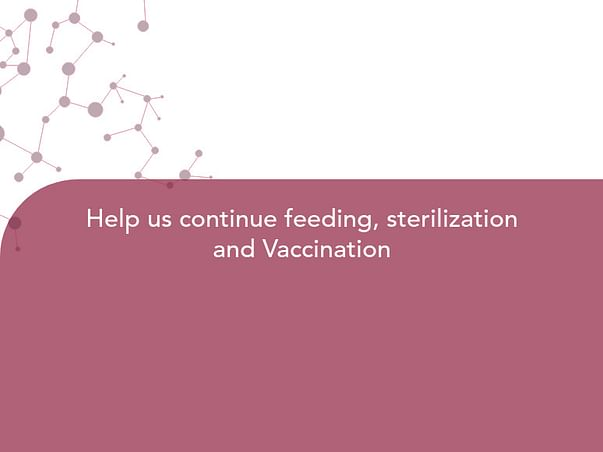 Help us continue feeding, sterilization and Vaccination