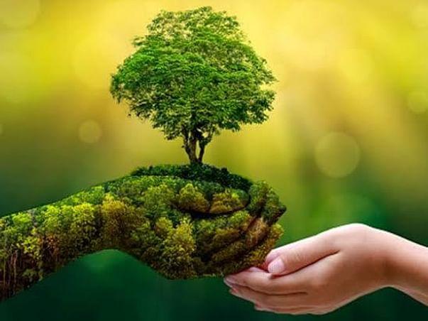Abdul Kalam's Green India