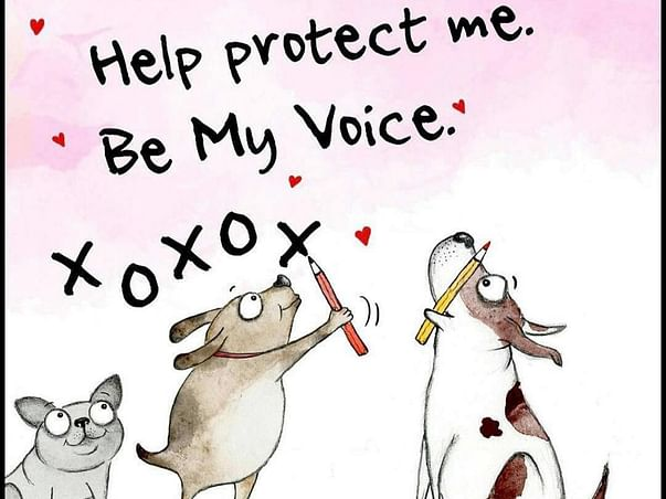 HELP PROTECT ME  BE MY VOICE!!!!!
