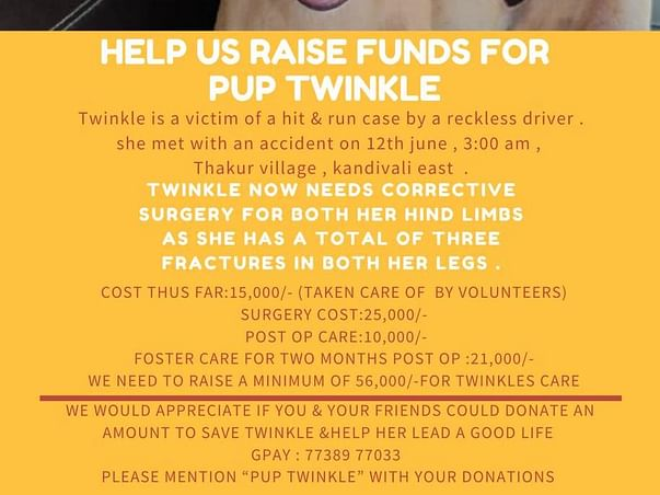 TWINKLE CORRECTIVE SURGERY FUNDS