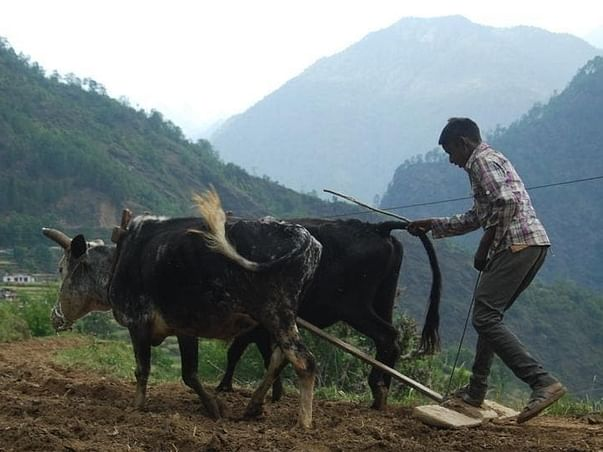 Help us, in helping the farmers of Uttarakhand