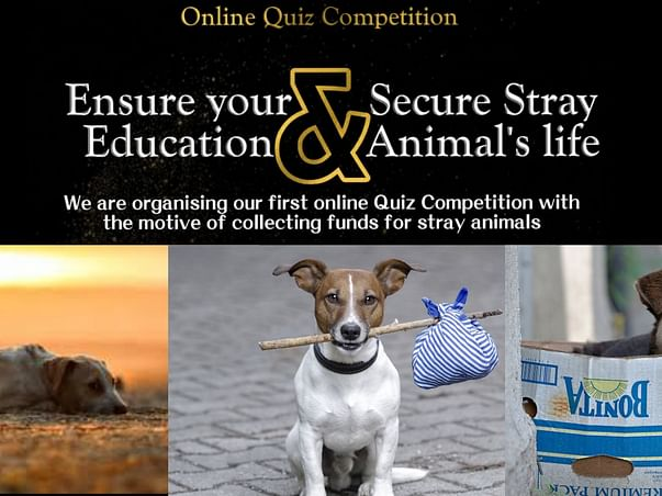 Digi Vets Funds For Secure Stray Life
