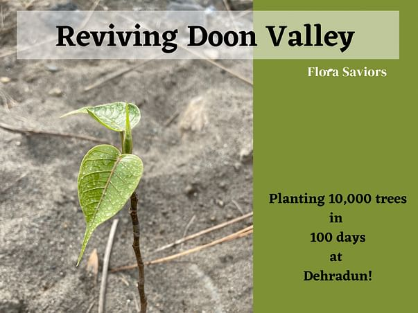 Planting 10,000 trees to restore the lost green cover of Dehradun!