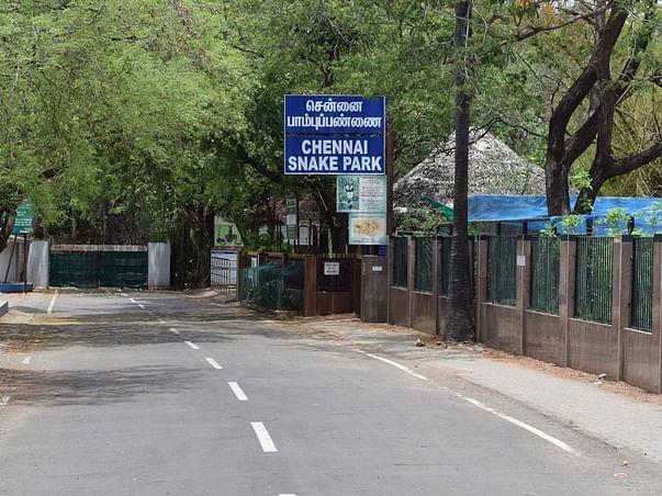 Help Save Guindy Snake Park - Chennai