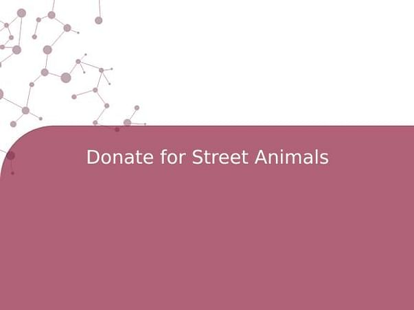 Donate for Street Animals