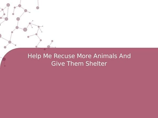 Help Me Recuse More Animals And Give Them Shelter