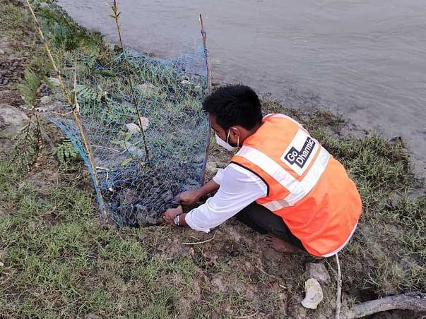 Help us restore the Sundarbans