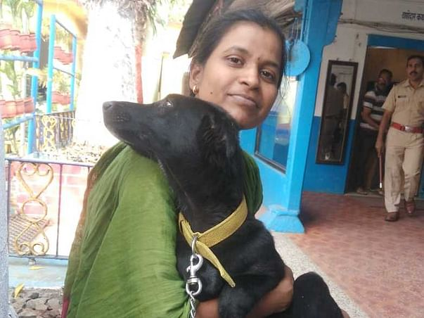 Help Surekha For Building A Shelter For Paralyzed Dogs!