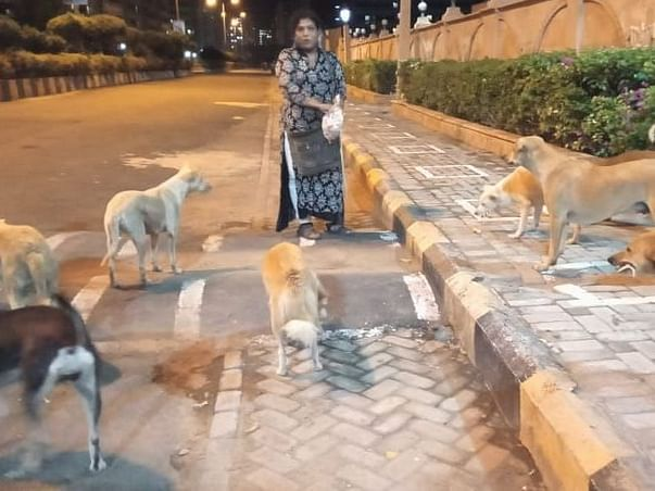 Join With Us To Help Street Animals