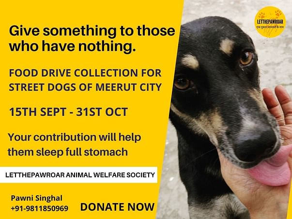 FOOD COLLECTION DRIVE FOR STREET DOGS OF MEERUT CITY