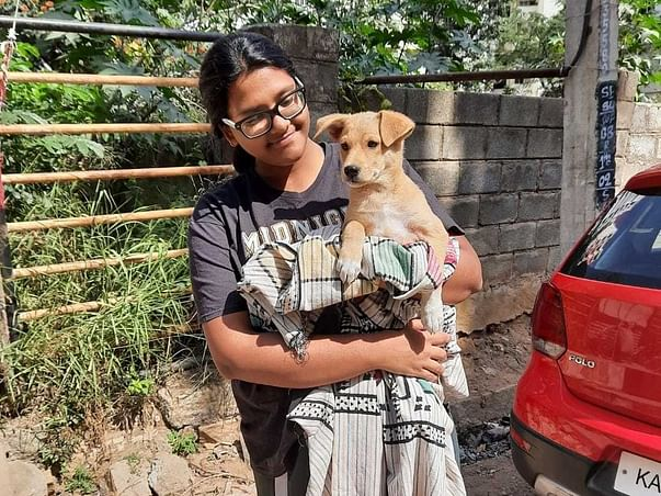 Help Care For Animal Rights Like Human Rights