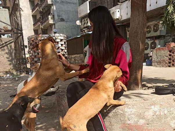 Support Vijayshree Rawat To Feed Community Animals