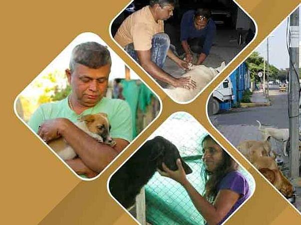 HELP!!MAKE NEW LIFE NGO!!