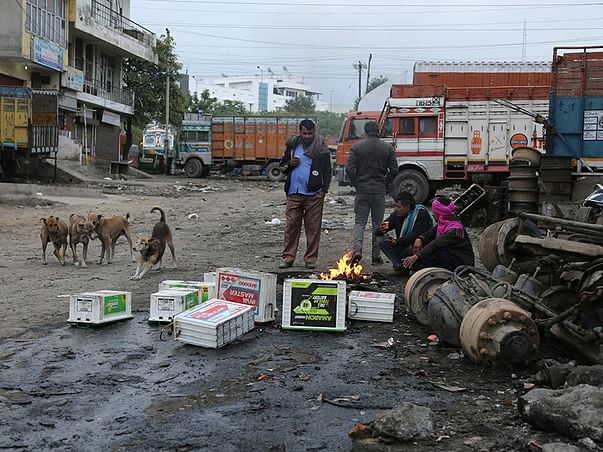 Support For Provide Shelter For Stray Dogs