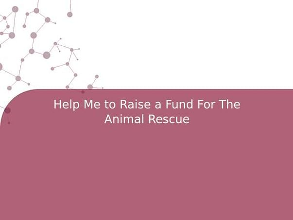 Help Me to Raise a Fund For The Animal Rescue