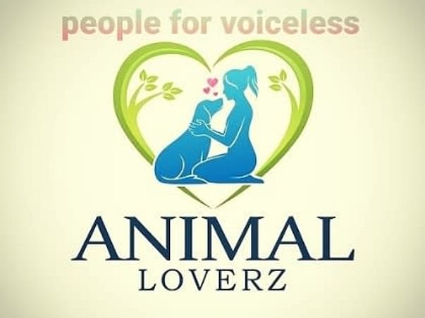 Support For Voiceless