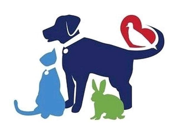 Help Street Animals