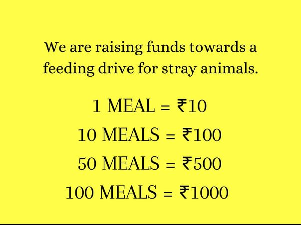 Save the Strays! @tailsofhopeofficial