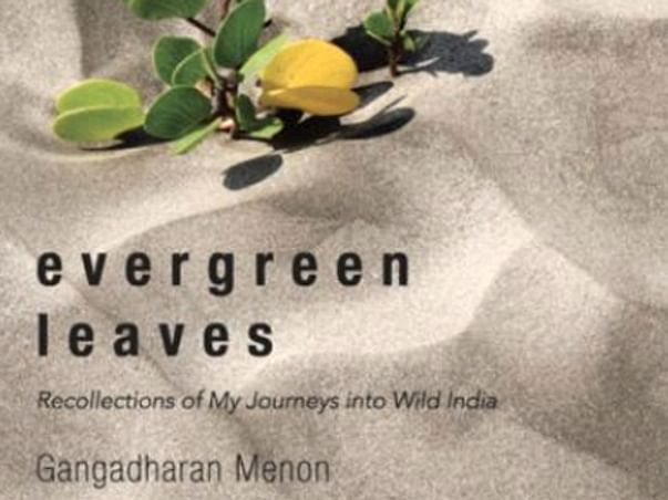 Through my book, Evergreen Leaves - experience the years of my travelling in the wild.