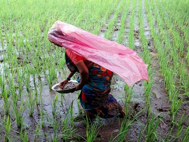 Help enhance the incomes of farmers