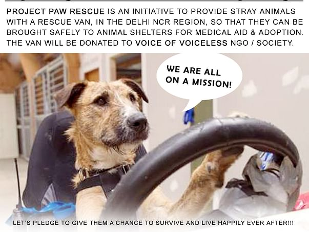 I am fundraising for a rescue van for stray animals in Delhi