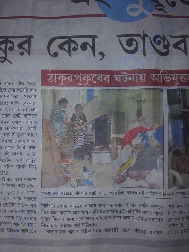 News Report 'Why dogs, mayhem at teacher's residence'