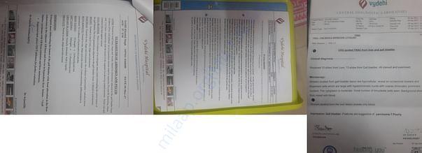 Cancer Diagnosis document