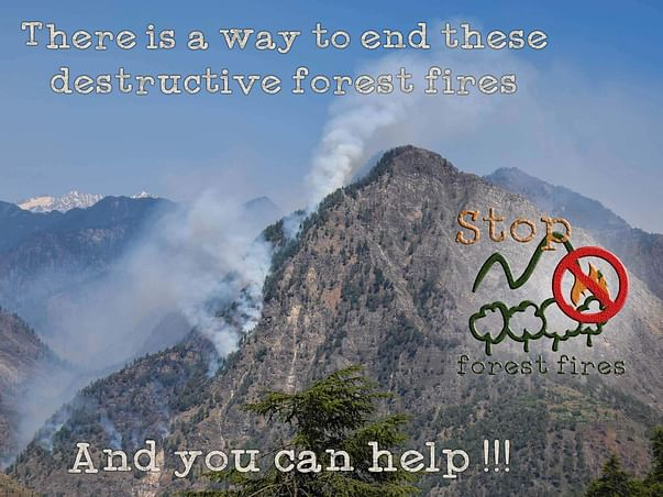 Help Save The Himalayan Forests In Kullu.