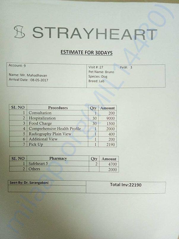 Hospital's estimated invoice for Bruno